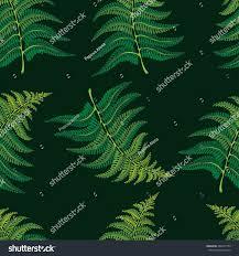 wallpaper fernvector seamless pattern endless texture stock vector