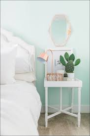 What Color To Paint My Bedroom Bedroom Amazing House Bedroom Colour Bedroom Walls Colour