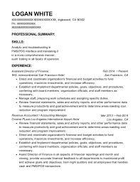 director of finance resume camp ondessonk assistant director of finance resume sample