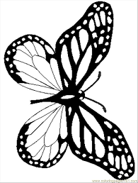 coloring page butterfly monarch monarch coloring page 401309