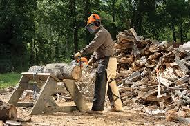 black friday chainsaw deals stihl ms 311 chainsaw fuel efficient chainsaws stihl usa