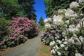 Botanical Gardens Highland Park Botanical Collections Highland Park Conservancy