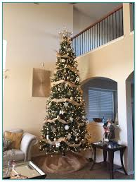 12 foot christmas tree 12 christmas trees