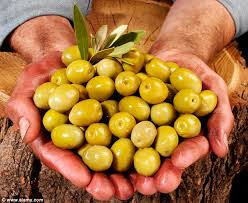 italian olives more than 85 000 tons of green olives seized by italian