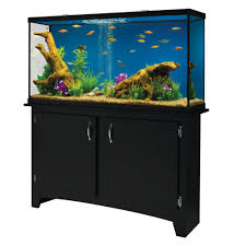 Petsmart Hamster Cages Fish Supplies Aquarium Supplies U0026 Accessories Petsmart