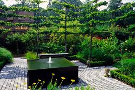 contemporary landscaping ideas from andy sturgeon small garden design