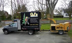 gj s tree services maple ridge tree removal hedge trimming