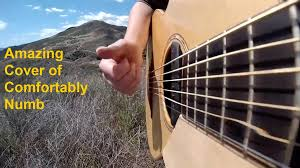 Comfortably Numb Cover Band Amazing Acoustic Cover Solo Of Pink Floyd U0027s Comfortably Numb U2013