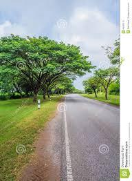 beautiful road with nature scene stock photo image 45506115