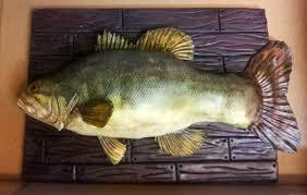 bass fish cake bass fish cake cakecentral