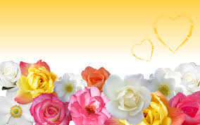 love flower wallpaper wallpapersafari