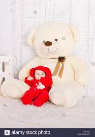 big teddy big teddy stock photos big teddy stock images alamy