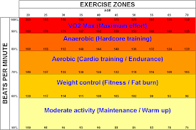weight loss what exercises should i perform to reduce fat on a