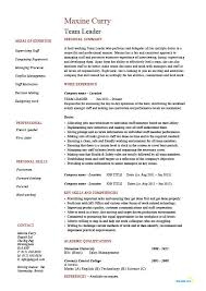 Resume Example Templates by Team Leader Resume Supervisor Cv Example Template Sample