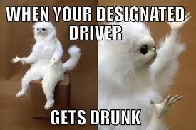 Drunk Cat Meme - for your pcrg meme needs