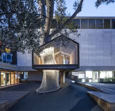 houses that save trees by wrapping themselves around them