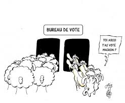 bureau de vote bureau de vote chribactu