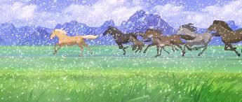 spirit halloween charleston wv spirit stallion of the cimarron horses pinterest movie