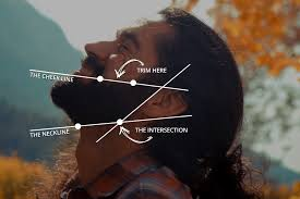 how to measure your beard length how to trim and shape your beard fast and easy guide beardoholic