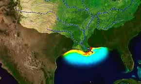 Map Of Gulf Of Mexico There U0027s Nothing Average About This Year U0027s Gulf Of Mexico U0027dead