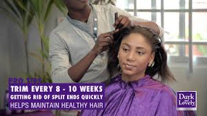 alma legend hair does it really work how to treat hair ends featuring amla legend of dark and lovely