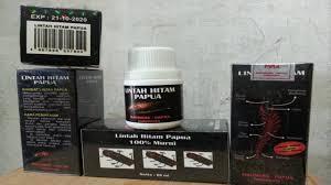 Minyak Lintah Papua Hitam minyak lintah hitam papua asli