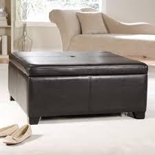 Brown Storage Ottoman Furniture Elegant Coffee Table Design Ideas With Square Storage