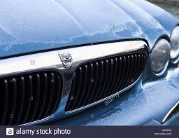 jaguar grill jaguar car x type bonnet and grill stock photo royalty free image