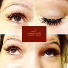 professional eyelash extension mink lash certification 11 images digi traffic
