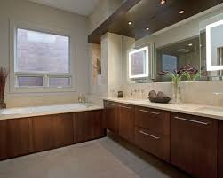 Bathroom Mirrors And Lights Houzz - Bathroom mirror and lights