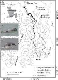 Irrawaddy River Map Brian D Smith Wildlife Conservation Society Ny Wcs Ocean