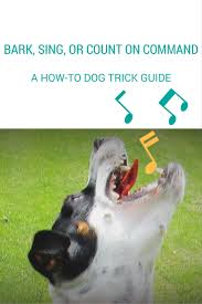 how to teach your dog to bark on command talent hounds