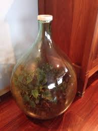 sealed bottle garden my parents also have a sealed bottle garden hasn t been opened or