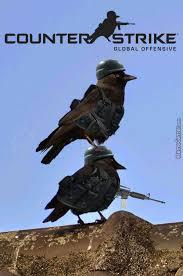 Crow Meme - cs crow by shimon trabelsi 7 meme center