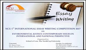Human Right Law Coursework Final Year Llb Law Essay by Northcap University 1st International Essay Writing Competition