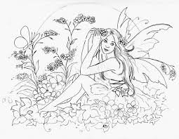 379 fairies images coloring books draw