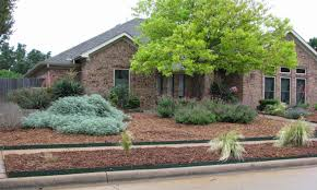 drought landscaping ideas very colorful drought resistant