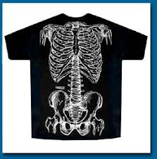 Human Anatomy T Shirts So Many Shirts And Only One Body November 2006