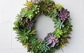 succulent wreath how to make a succulent wreath rodale s organic