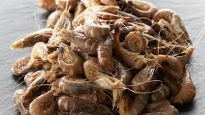 cuisiner crevette cuisiner la crevette conseils de préparation et recette crevette