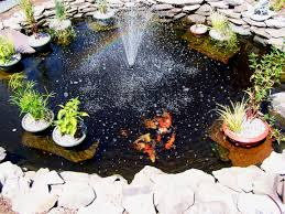 beautiful backyard pond ideas for all budgets pond in a raised bed
