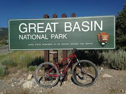great basin native plants the national parks great basin in wanderlust