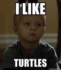 I Like Turtles Meme - i like turtles abel soa meme generator