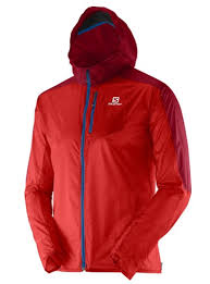 salomon fast wing hoodie review outdoorgearlab