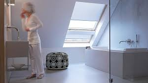skylight blind coulisse