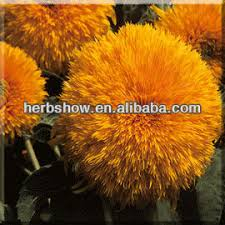 buy cheap china non gmo seeds products find china non gmo seeds