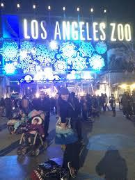 Zoo Lights Address by The Los Angeles Zoo Hippos And Zoo Lights U2013 January 2 2016