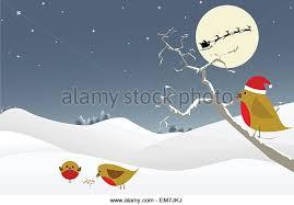 christmas robin drawing stock photos u0026 christmas robin drawing
