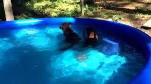 Intex 12x30 Pool Summer Escapes Easy Set Pool Youtube
