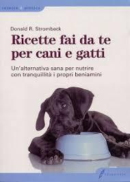 alimentazione casalinga gatto dognet it 皰2001 2004 il portale dalla parte
